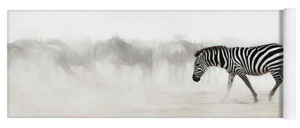 Zebra In Dust Of Africa Yoga Mat