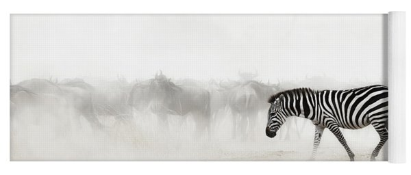 Zebra In Dust Of Africa Yoga Mat