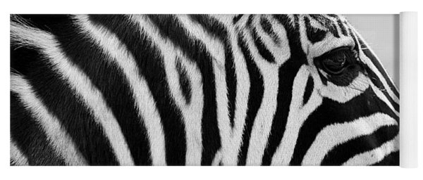 Zebra Portrait In Black And White Yoga Mat