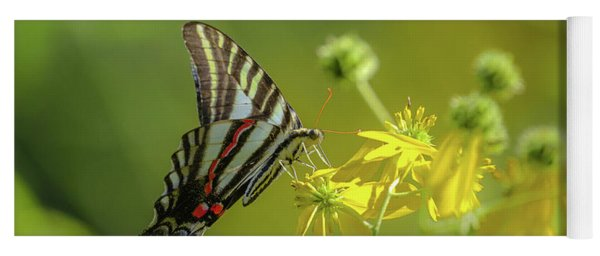 Yoga Mat featuring the photograph Zebra Swallowtail Butterfly by Lori Coleman