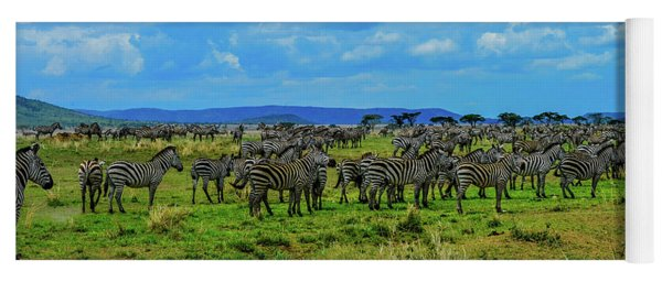 Zebras On The Serengeti Yoga Mat