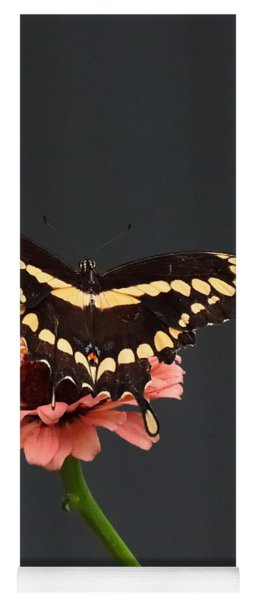 Zinnia With Butterfly 2708  Yoga Mat