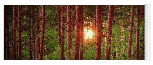 010 - Pine Sunset Yoga Mat