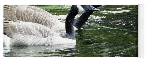 031619 Geese City Park New Orleans Yoga Mat