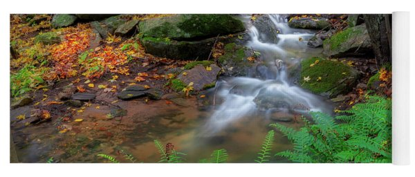 Yoga Mat featuring the photograph Autumn Falling by Bill Wakeley