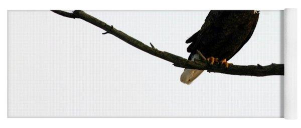 Bald Eagle 120501 Yoga Mat