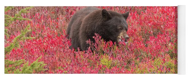 Berries For The Bear Yoga Mat