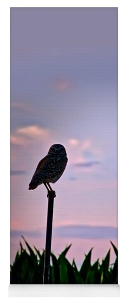 Burrowing Owl On A Stick Yoga Mat