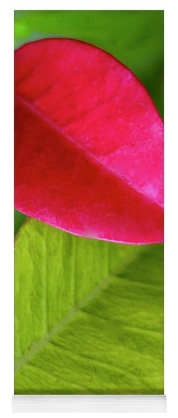 Colours. Red Yoga Mat