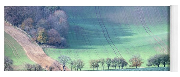 Autumn In South Moravia 1 Yoga Mat