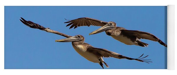 Yoga Mat featuring the photograph Outer Banks Pelicans by Lora J Wilson