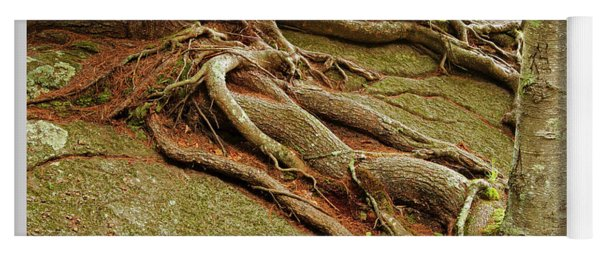 Roots On Rock Yoga Mat