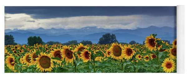 Sunflowers Under A Stormy Sky Yoga Mat