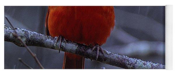 The Curious Cardinal  Yoga Mat