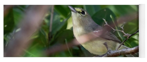 Thick-billed Vireo Yoga Mat