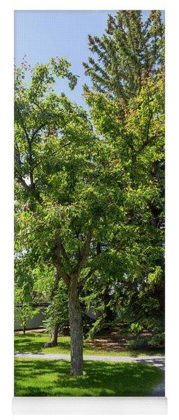 Tree In The Garden Yoga Mat
