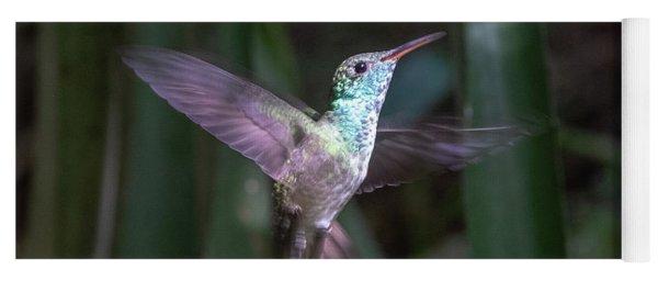Versicolored Emerald Hummingbird Hovers Yoga Mat
