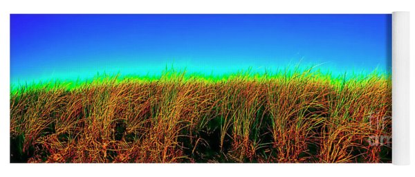 Wells Rachel Carson Wildlife Refuge Grass And Dunes Yoga Mat