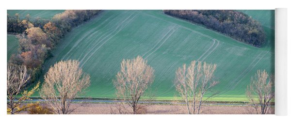 Yoga Mat featuring the photograph Autumn In Moravia 2 by Dubi Roman