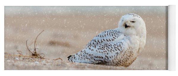 Snowy Owl  Yoga Mat