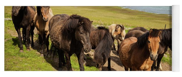 Icelandic Horses Yoga Mat
