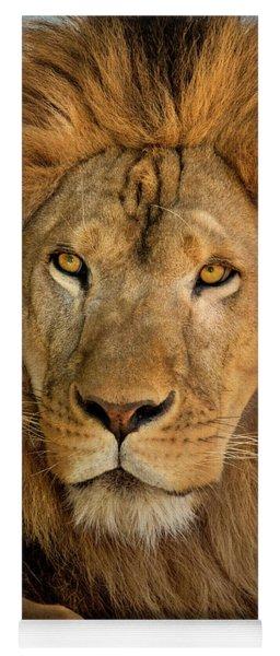 656250006 African Lion Panthera Leo Wildlife Rescue Yoga Mat
