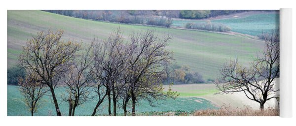 Yoga Mat featuring the photograph Autumn In Moravia 8 by Dubi Roman