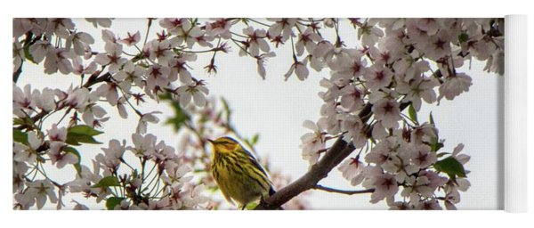 A Canary In A Cherry Tree  Yoga Mat