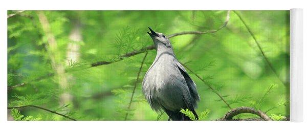 A Gray Catbird Singing Yoga Mat