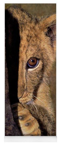 A Lion Cub Plays Hide And Seek Wildlife Rescue Yoga Mat