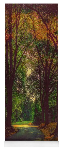 Yoga Mat featuring the photograph A Moody Pathway by Chris Lord