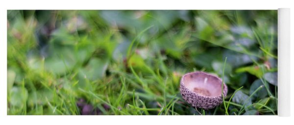 Yoga Mat featuring the photograph Acorn Cup On Grass by Scott Lyons