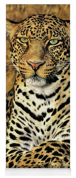 African Leopard Portrait Wildlife Rescue Yoga Mat