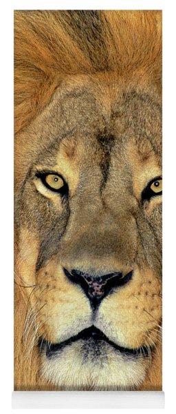 African Lion Portrait Wildlife Rescue Yoga Mat