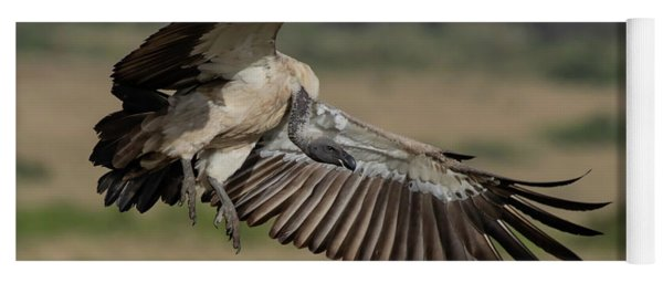 African White-backed Vulture Yoga Mat