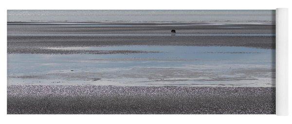 Alaska Brown Bear On The Shore Yoga Mat