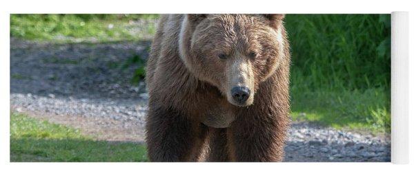 Alaskan Brown Bear Walking Towards You Yoga Mat