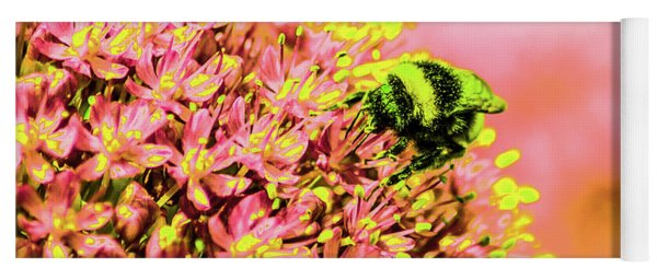 Allium With Bee 1 Yoga Mat