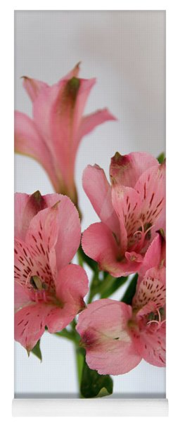 Alstroemeria Up Close Yoga Mat