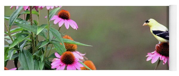 American Goldfinch On The Coneflowers Yoga Mat