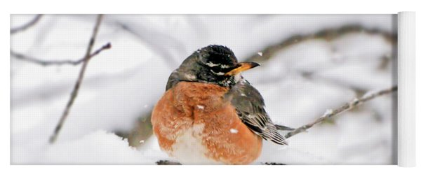 American Robin In The Snow Yoga Mat