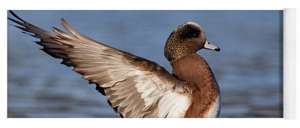 American Wigeon Delight Yoga Mat