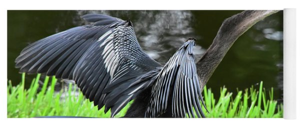 Anhinga Surprise Yoga Mat