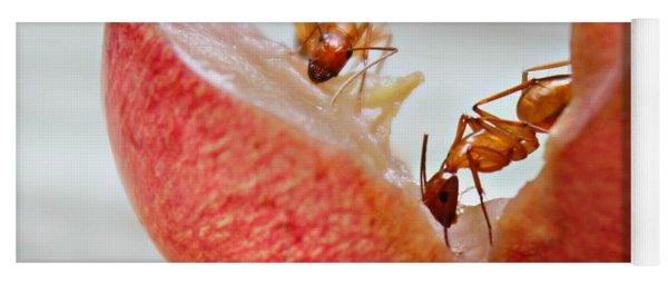 Ants Yoga Mat