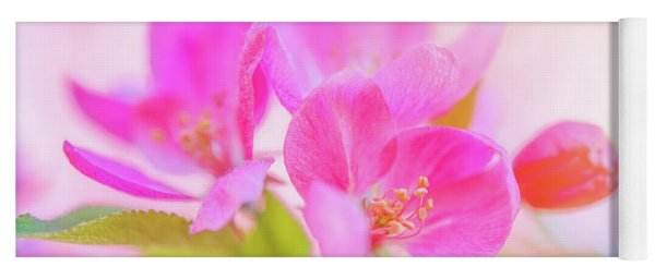 Apple Blossoms Colorful Glow Yoga Mat