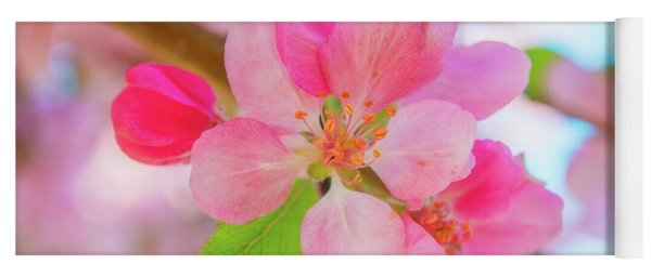 Apple Blossoms Red And Blue Yoga Mat