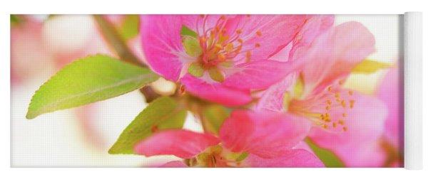 Apple Blossoms Warm Glow Yoga Mat