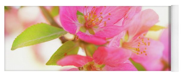Apple Blossoms Warm Glow Yoga Mat