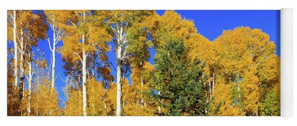 Arizona Aspens And Blowing Leaves Yoga Mat