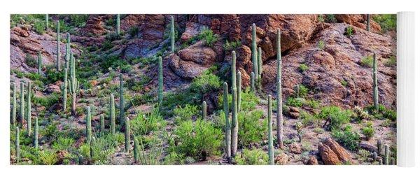 Arizona Desert Saguaro Forest Yoga Mat